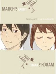 March Rabbit